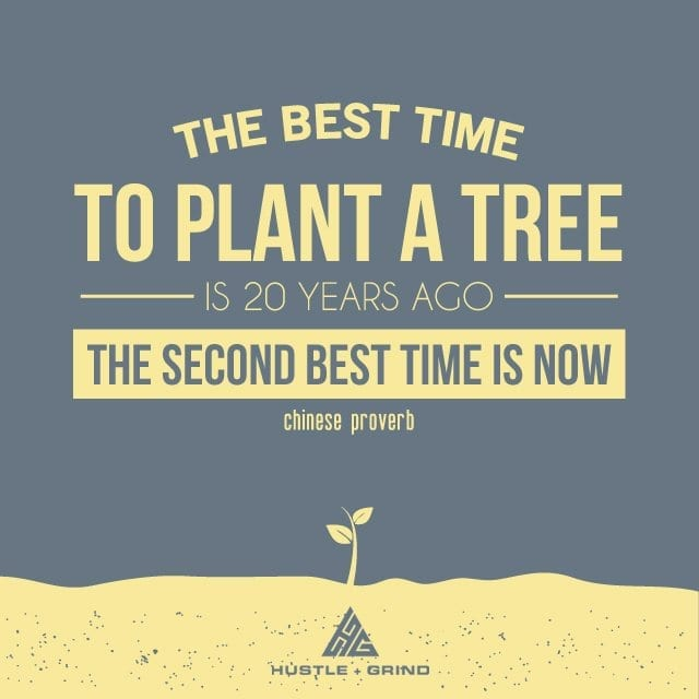 The best time to plant a tree